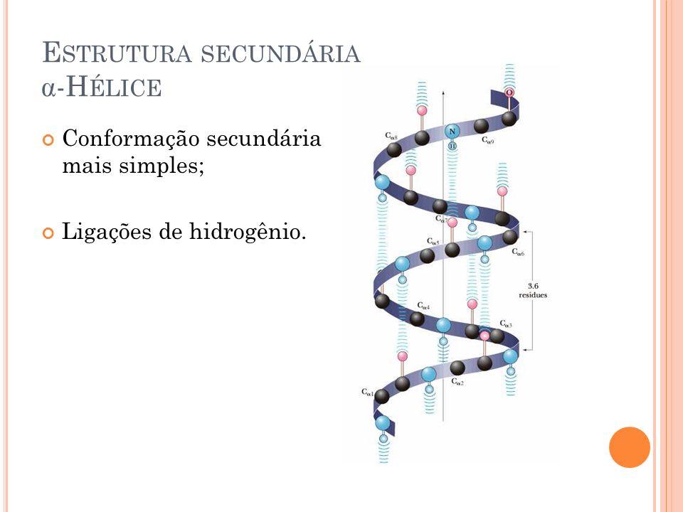 Estrutura secundária -Hélice