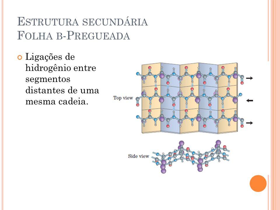Estrutura secundária Folha β-Pregueada