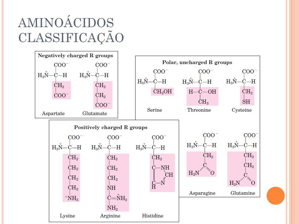 AMINOÁCIDOS CLASSIFICAÇÃO