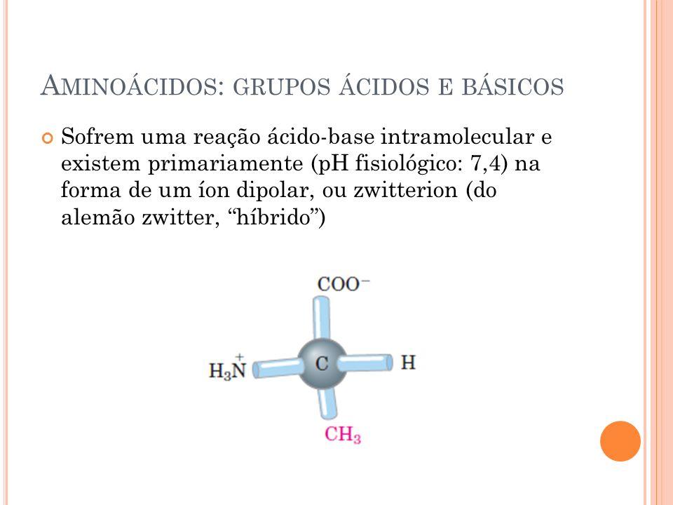 Aminoácidos: grupos ácidos e básicos