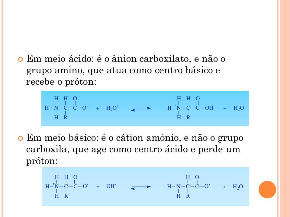 Em meio ácido: é o ânion carboxilato, e não o grupo amino, que atua como centro básico e recebe o próton: