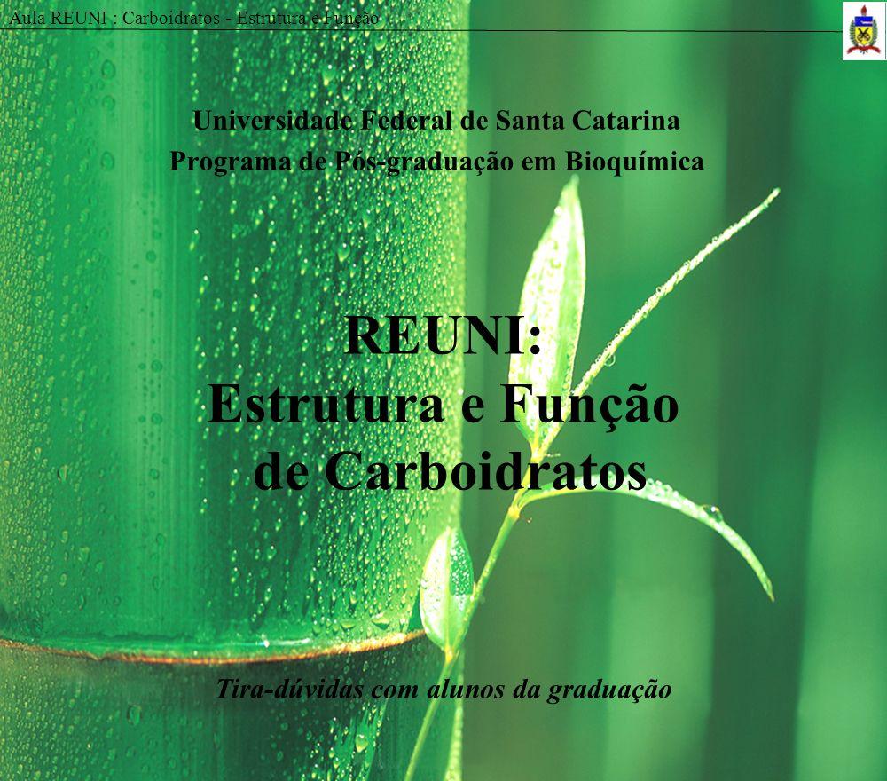 REUNI: Estrutura e Função de Carboidratos