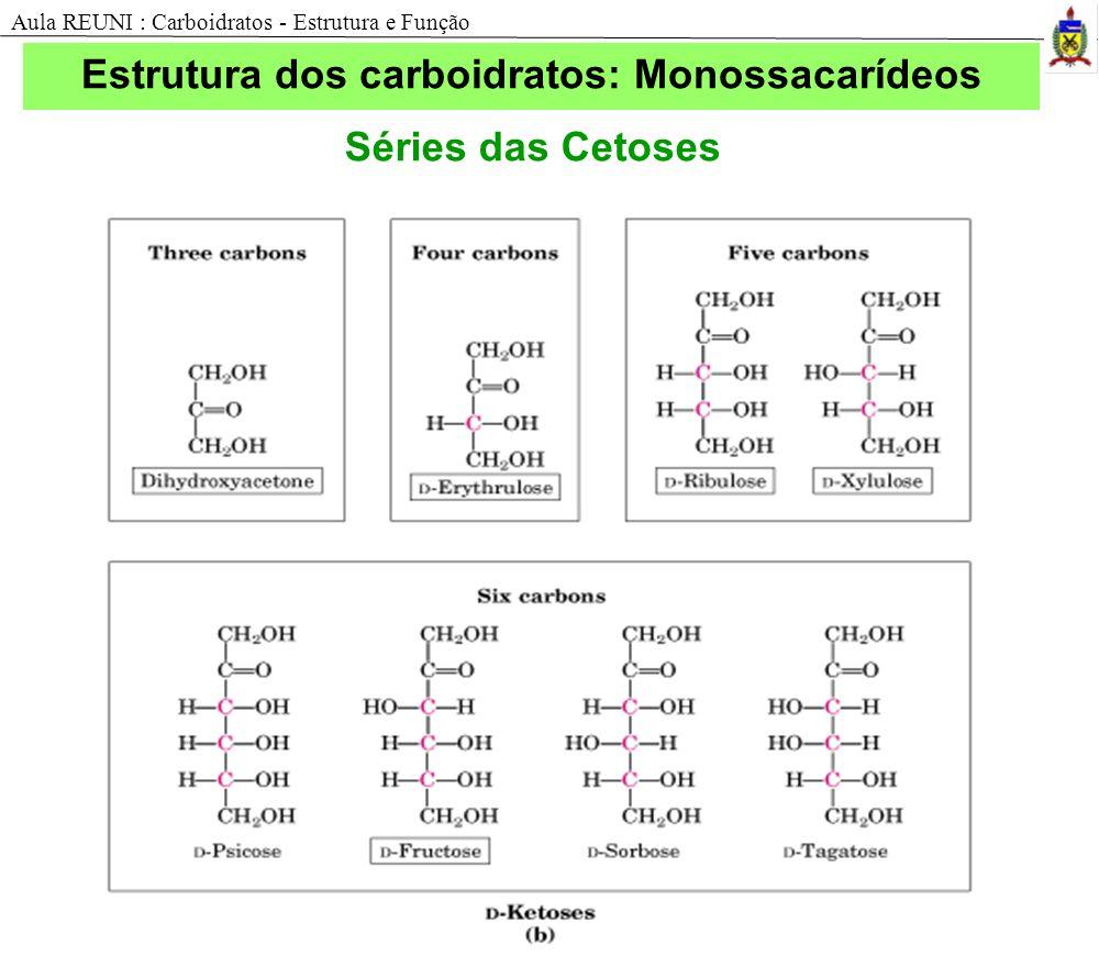 Estrutura dos carboidratos: Monossacarídeos