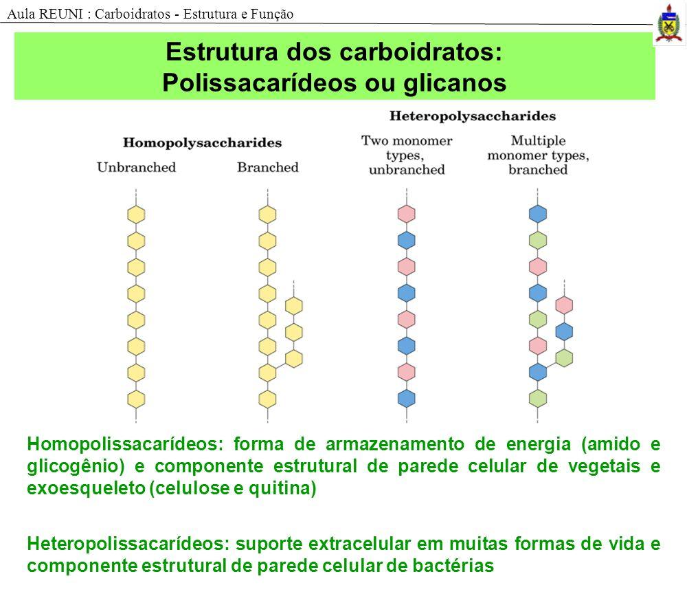 Estrutura dos carboidratos: Polissacarídeos ou glicanos