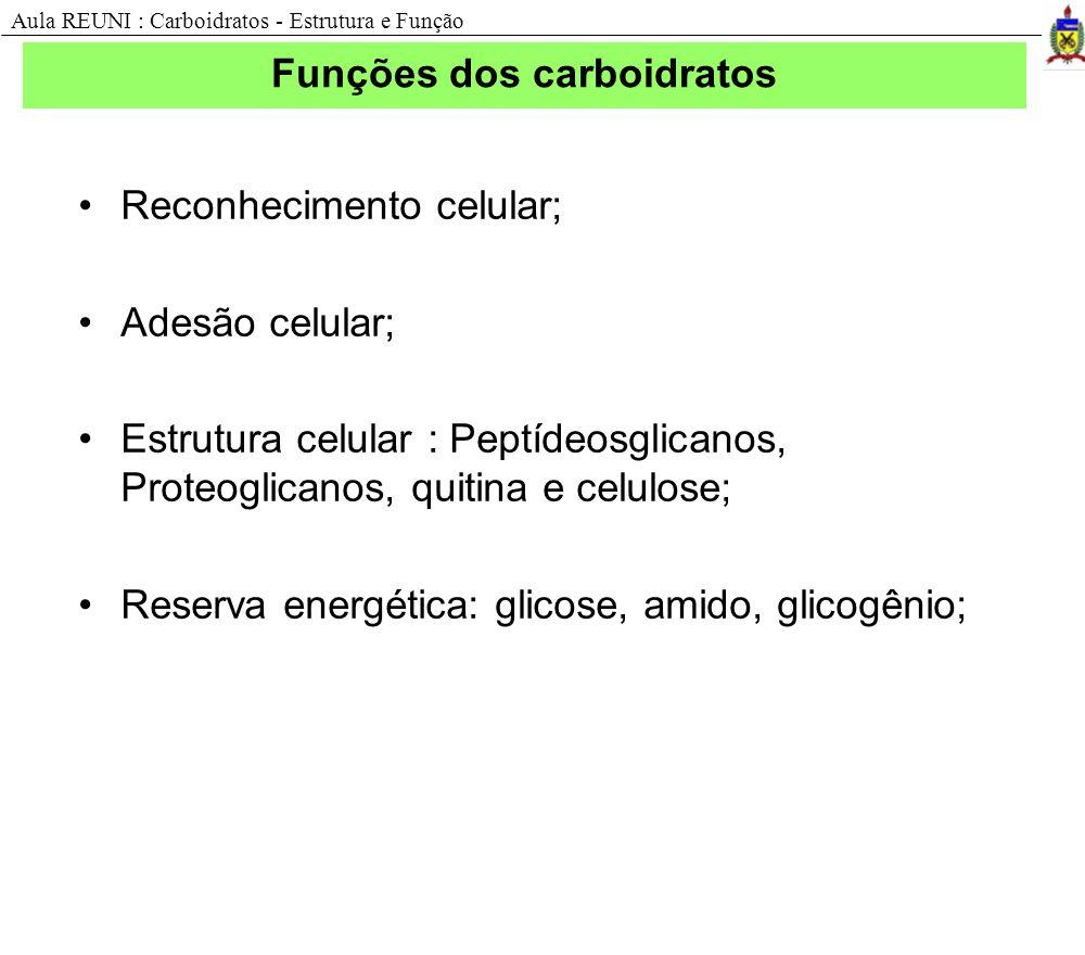 Funções dos carboidratos