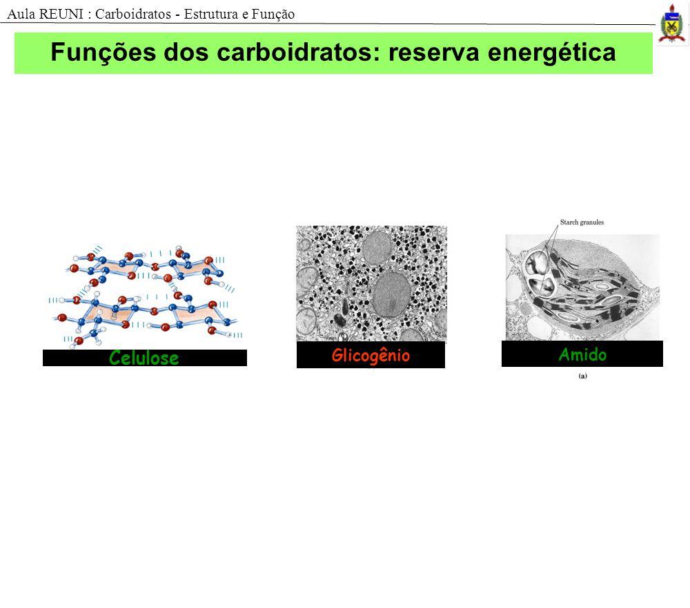 Funções dos carboidratos: reserva energética