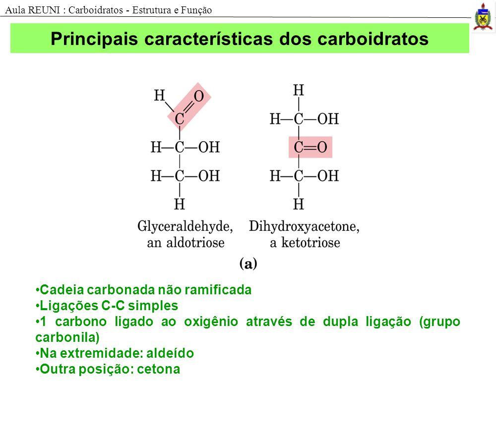 Principais características dos carboidratos
