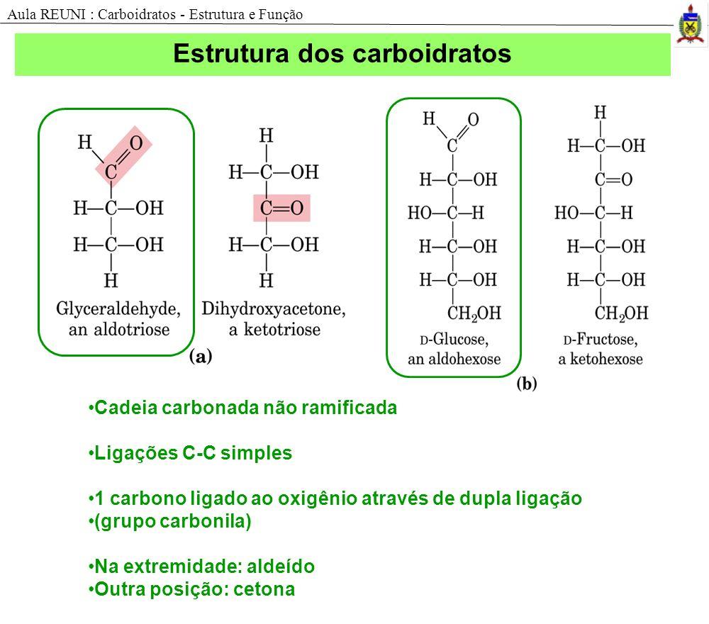 Estrutura dos carboidratos