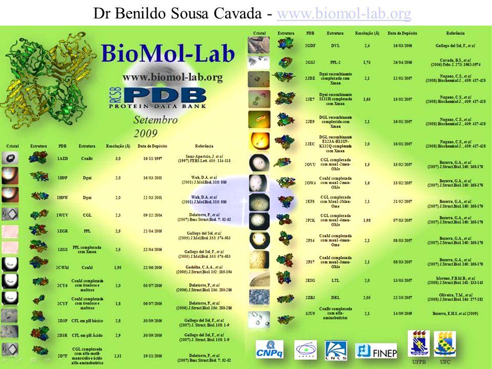 Dr Benildo Sousa Cavada - www.biomol-lab.org
