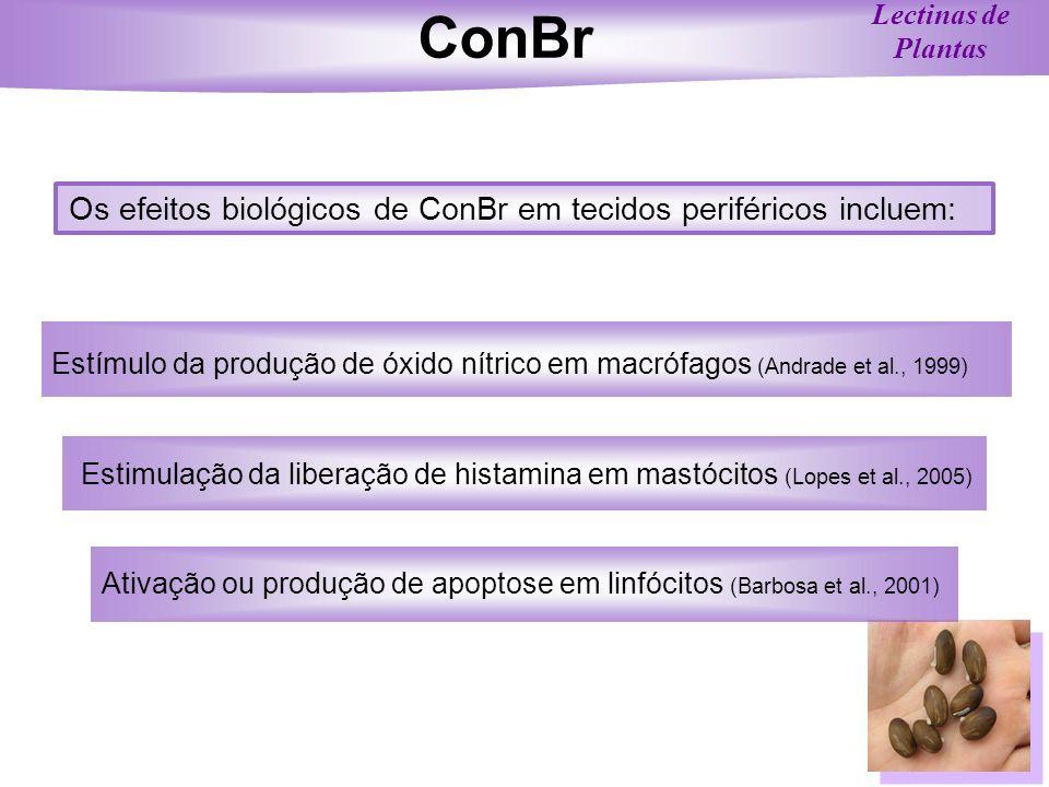 ConBr Os efeitos biológicos de ConBr em tecidos periféricos incluem: