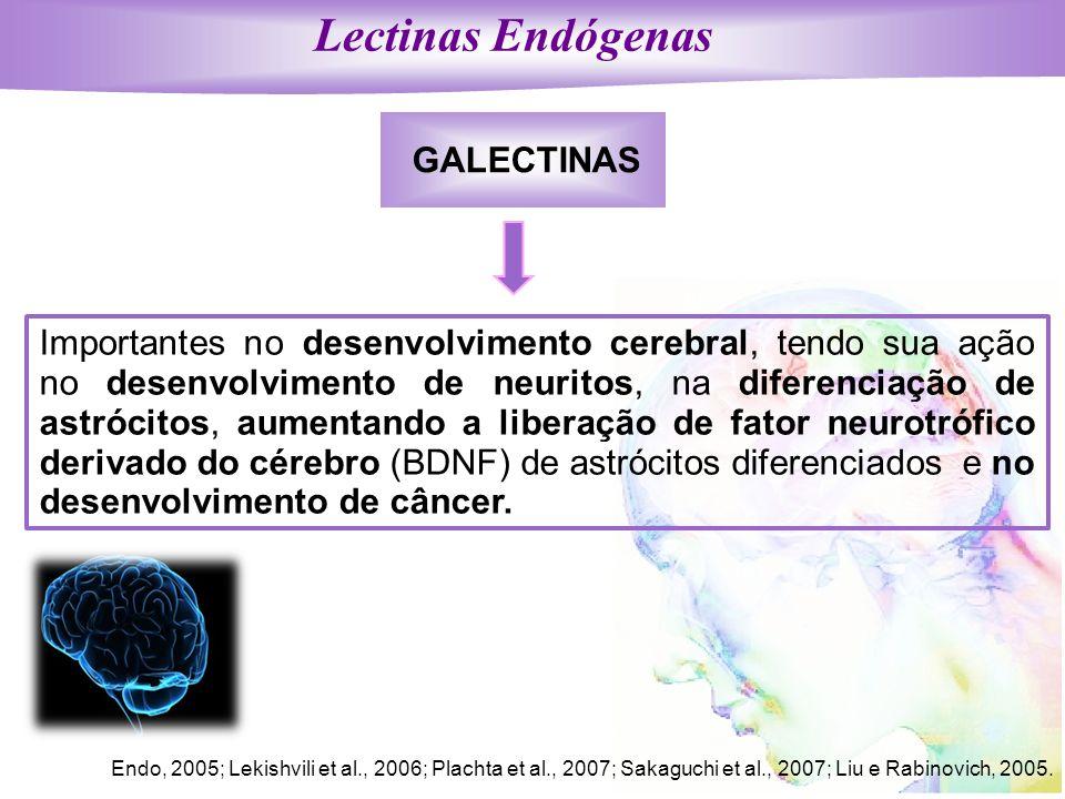 Lectinas Endógenas GALECTINAS