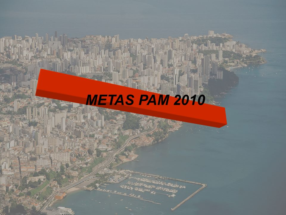 METAS PAM 2010