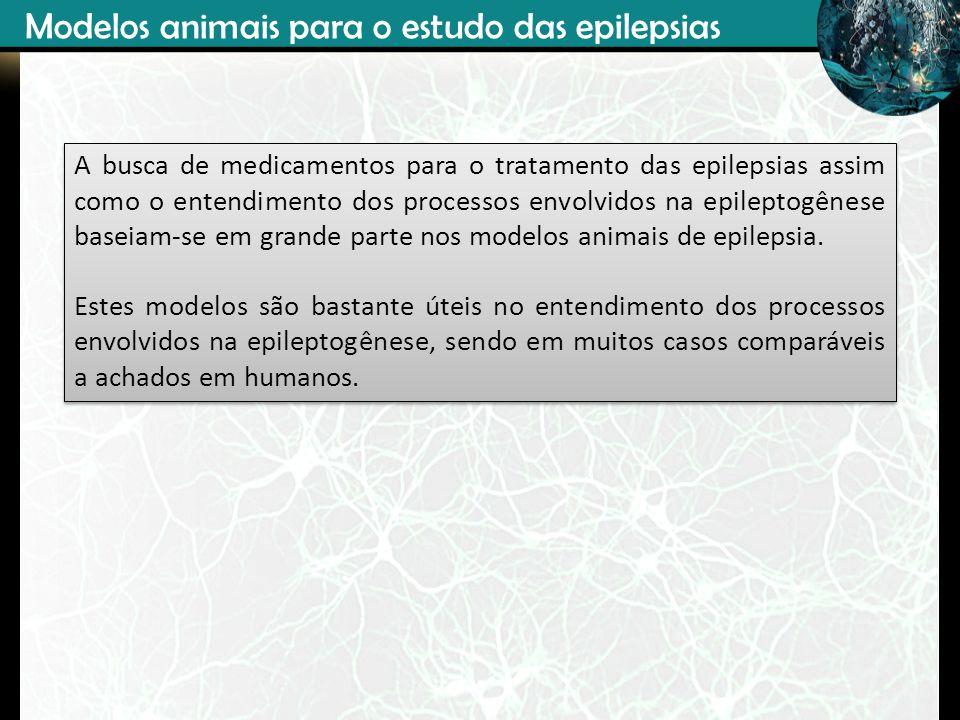 Modelos animais para o estudo das epilepsias