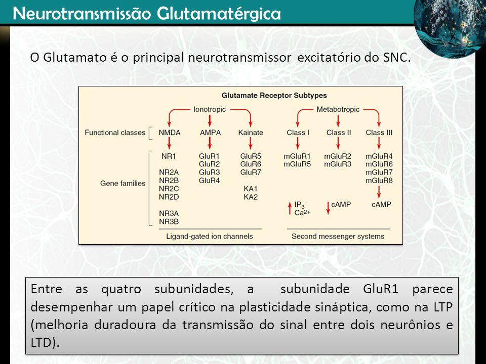Neurotransmissão Glutamatérgica