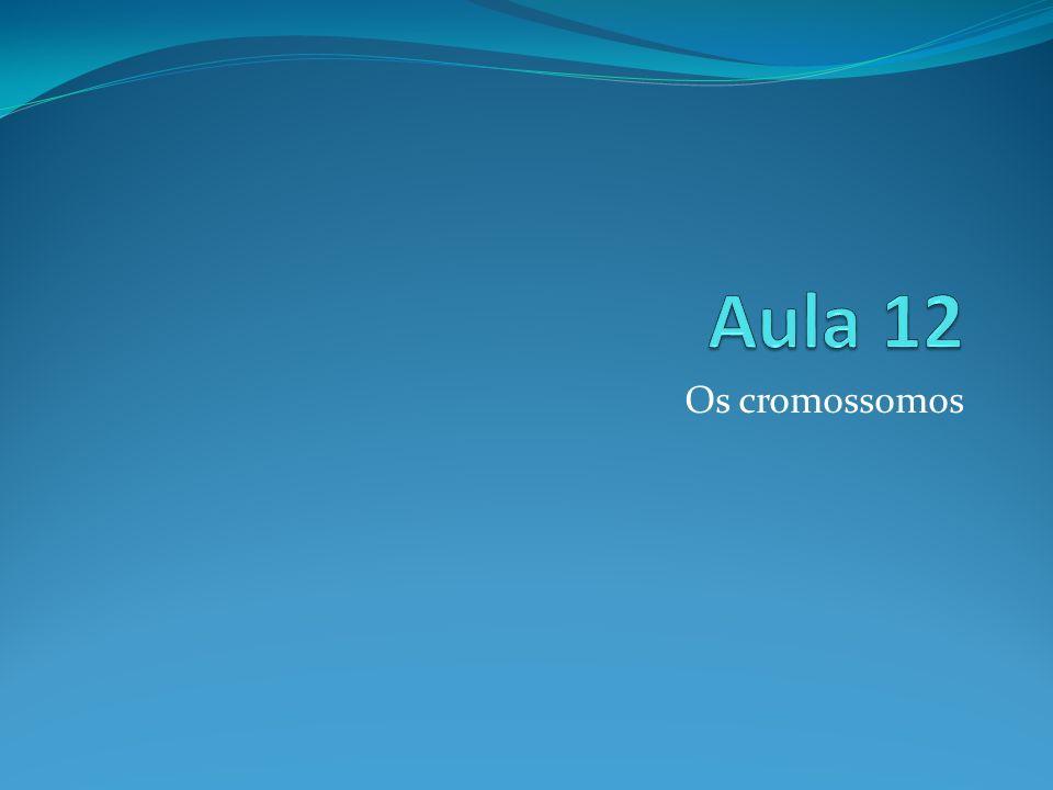 Aula 12 Os cromossomos