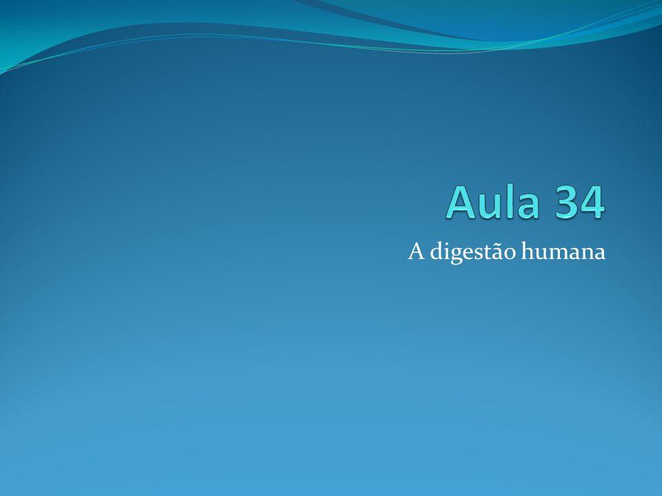 Aula 34 A digestão humana