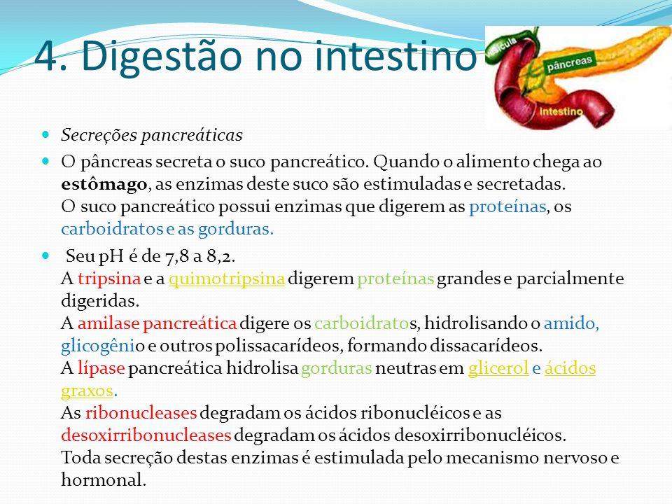 4. Digestão no intestino Secreções pancreáticas