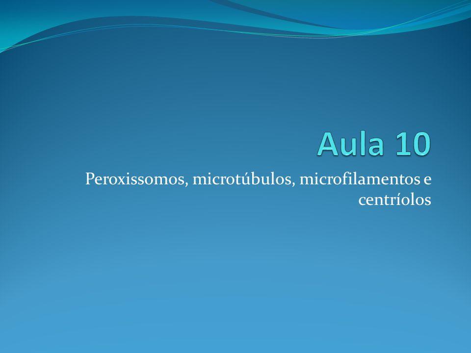 Peroxissomos, microtúbulos, microfilamentos e centríolos