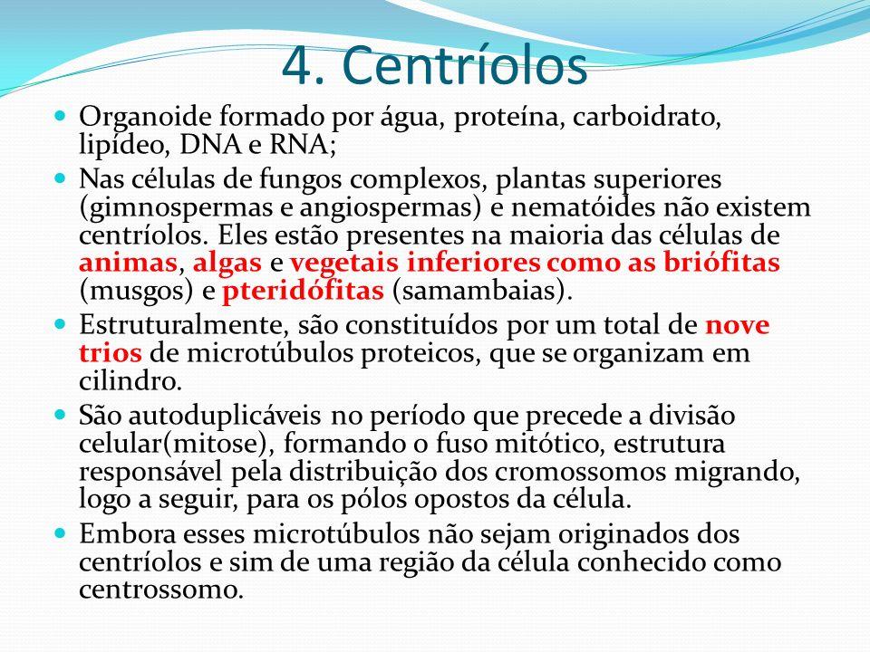 4. Centríolos Organoide formado por água, proteína, carboidrato, lipídeo, DNA e RNA;