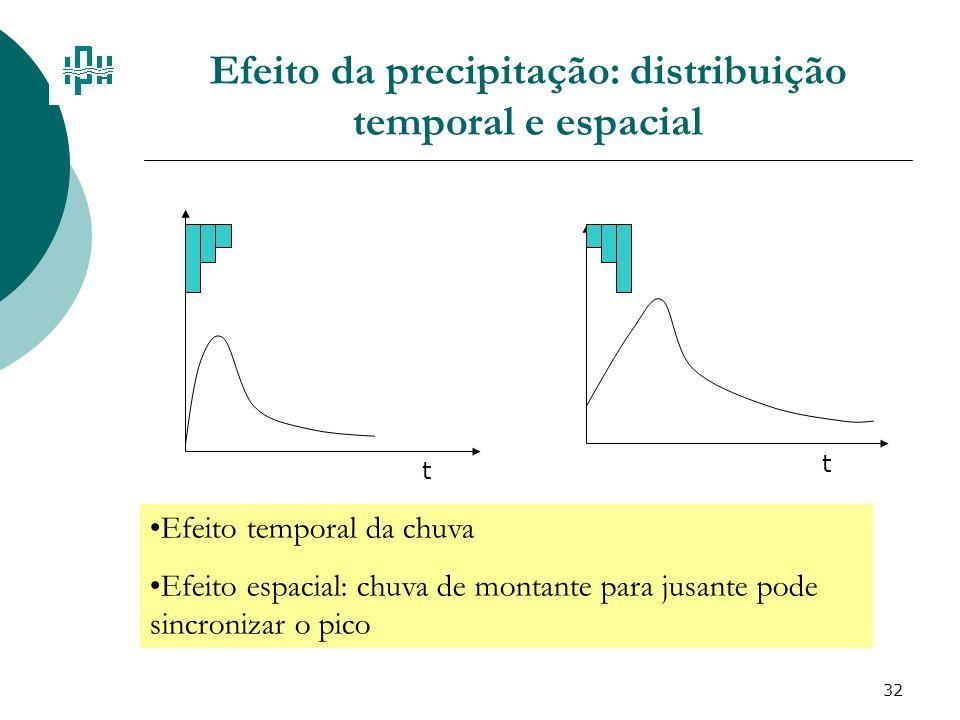 Efeito da precipitação: distribuição temporal e espacial