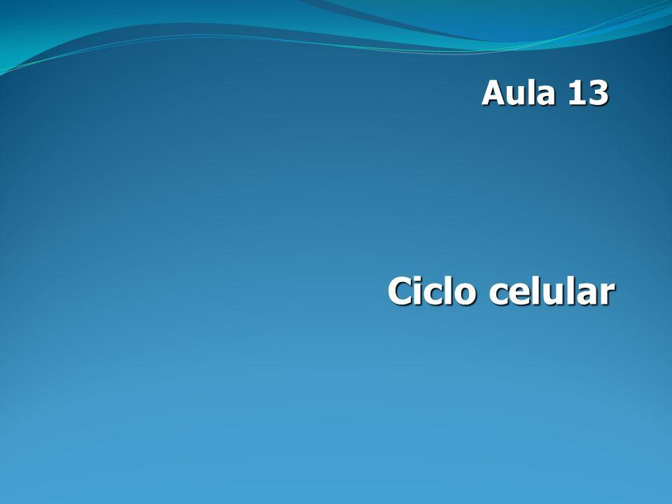 Aula 13 Ciclo celular