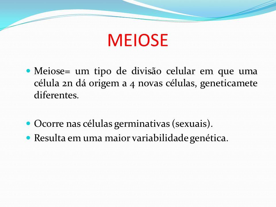 MEIOSE Meiose= um tipo de divisão celular em que uma célula 2n dá origem a 4 novas células, geneticamete diferentes.