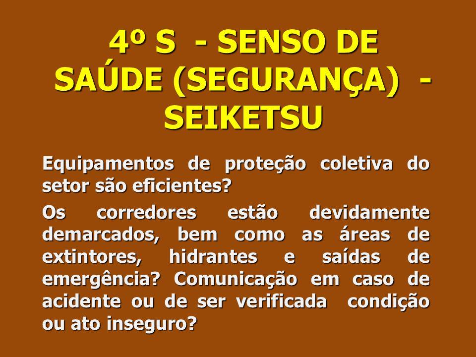 4º S - SENSO DE SAÚDE (SEGURANÇA) - SEIKETSU