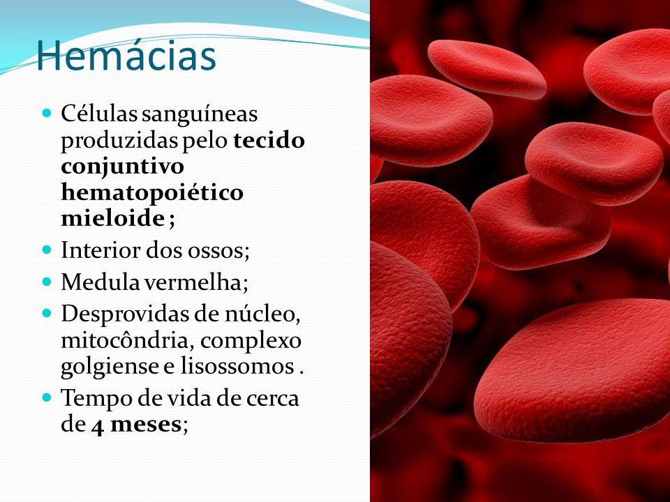 HemáciasCélulas sanguíneas produzidas pelo tecido conjuntivo hematopoiético mieloide ; Interior dos ossos;