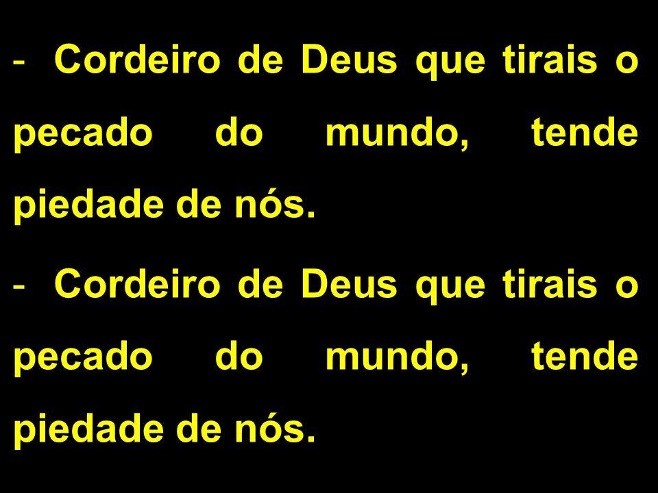 Cordeiro de Deus que tirais o pecado do mundo, tende piedade de nós.