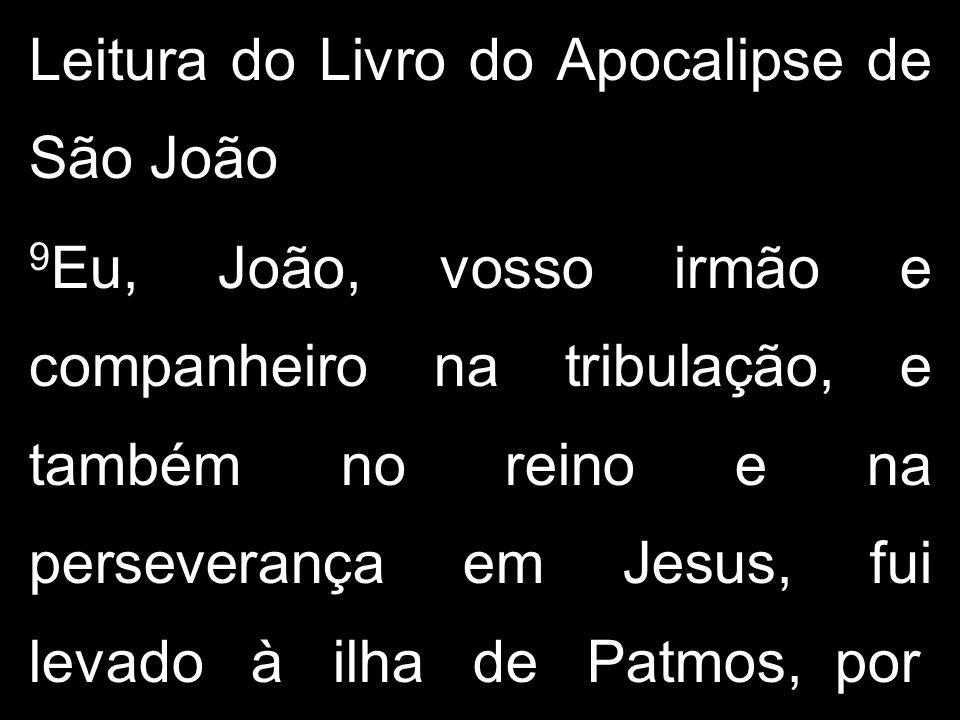 Leitura do Livro do Apocalipse de São João