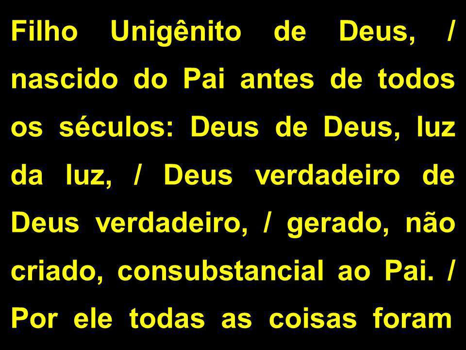 Filho Unigênito de Deus, / nascido do Pai antes de todos os séculos: Deus de Deus, luz da luz, / Deus verdadeiro de Deus verdadeiro, / gerado, não criado, consubstancial ao Pai.