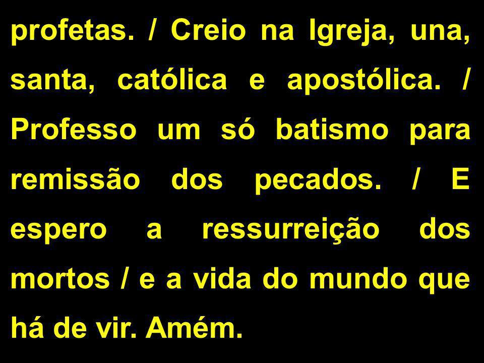profetas. / Creio na Igreja, una, santa, católica e apostólica