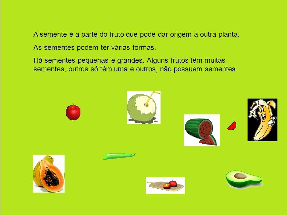 A semente é a parte do fruto que pode dar origem a outra planta.