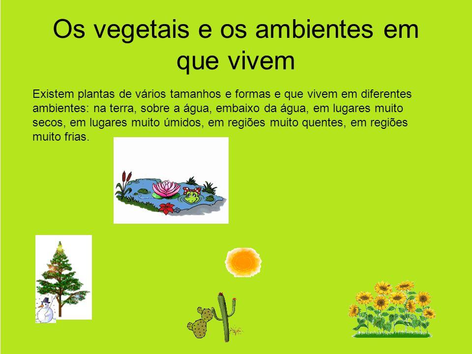 Os vegetais e os ambientes em que vivem