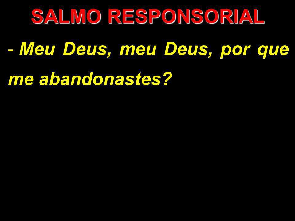 SALMO RESPONSORIAL Meu Deus, meu Deus, por que me abandonastes