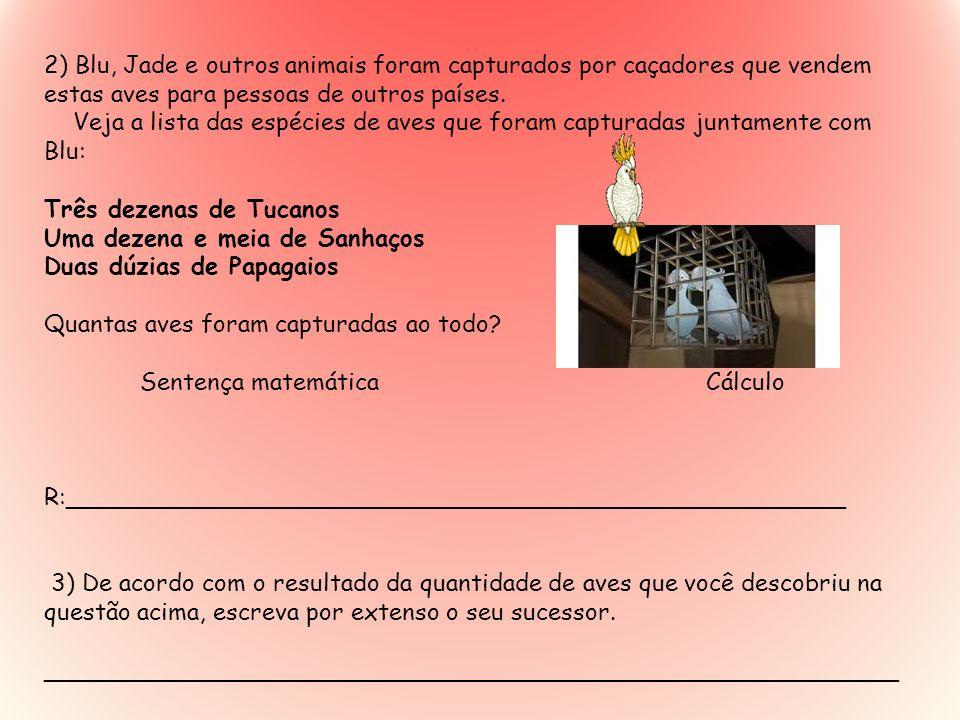 2) Blu, Jade e outros animais foram capturados por caçadores que vendem estas aves para pessoas de outros países.