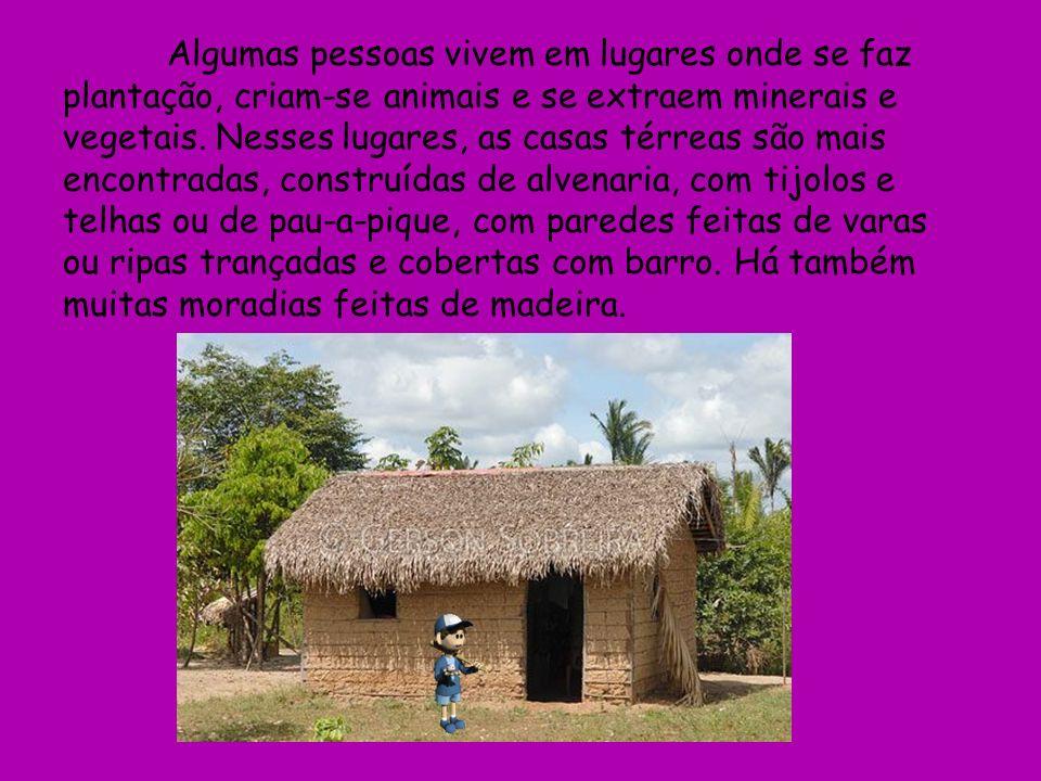 Algumas pessoas vivem em lugares onde se faz plantação, criam-se animais e se extraem minerais e vegetais.