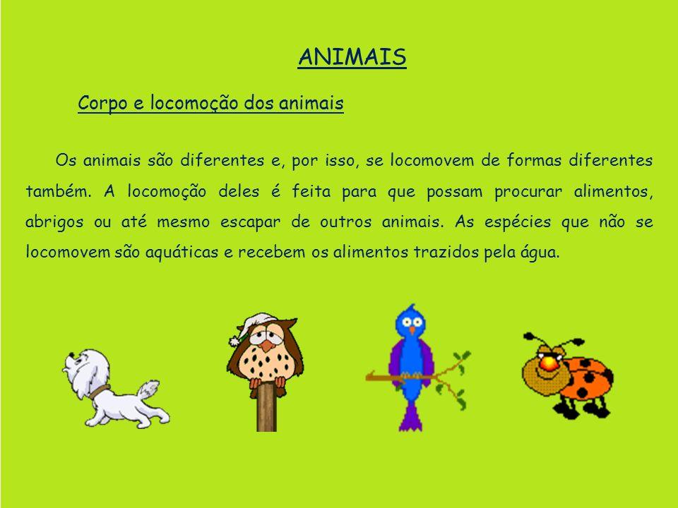 Corpo e locomoção dos animais