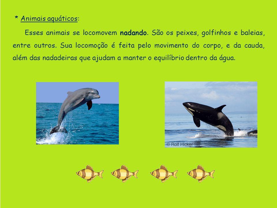 * Animais aquáticos: