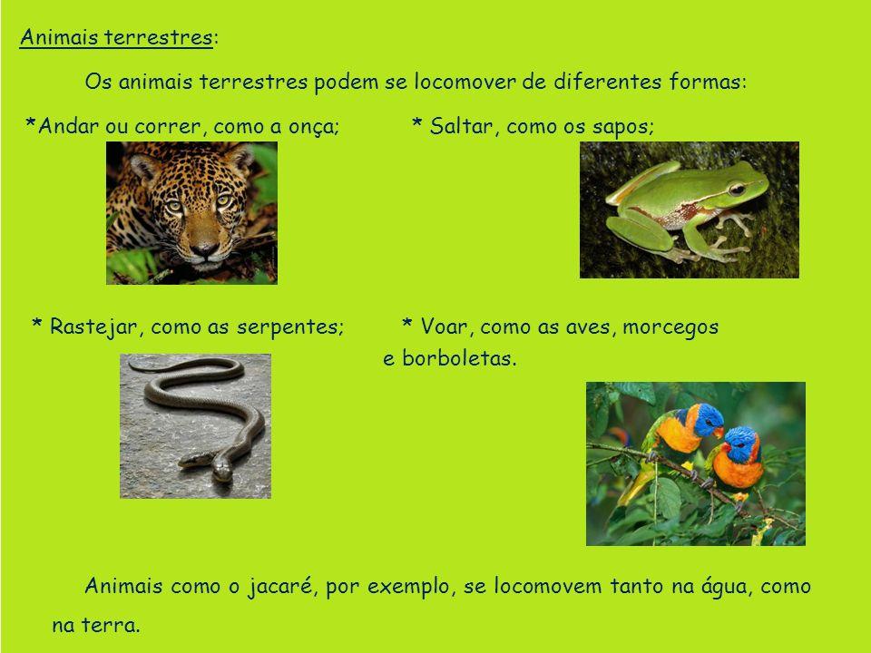 Animais terrestres: Os animais terrestres podem se locomover de diferentes formas: *Andar ou correr, como a onça; * Saltar, como os sapos;