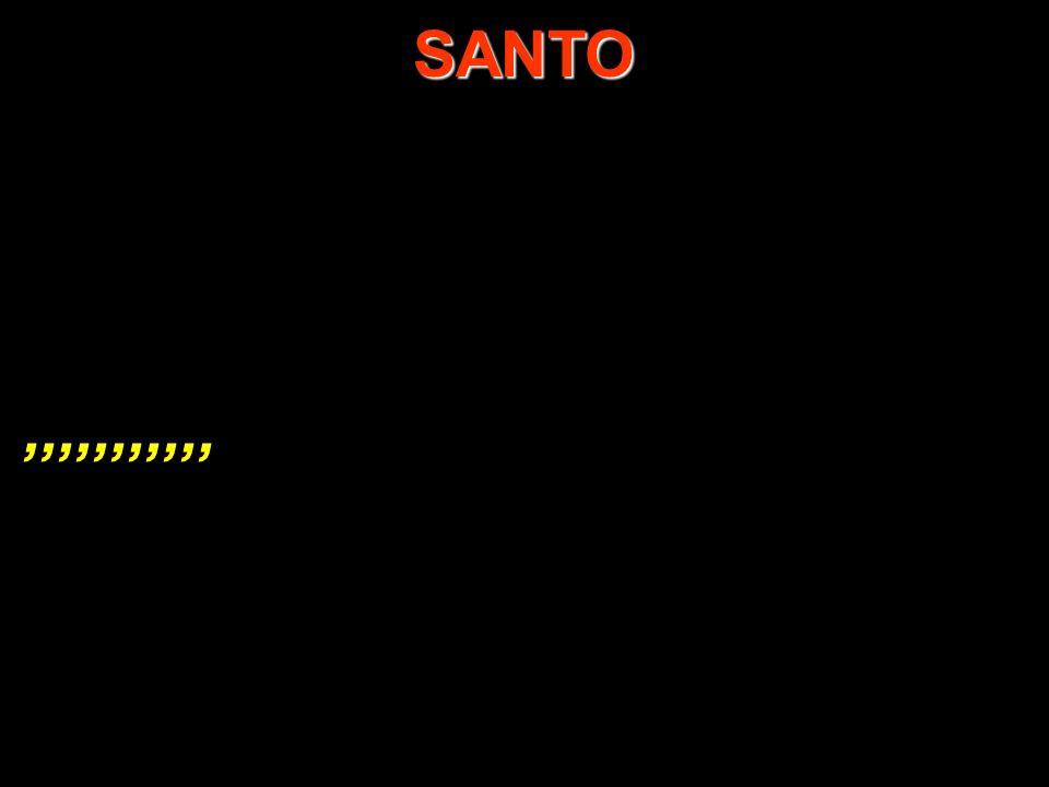 SANTO ,,,,,,,,,,,