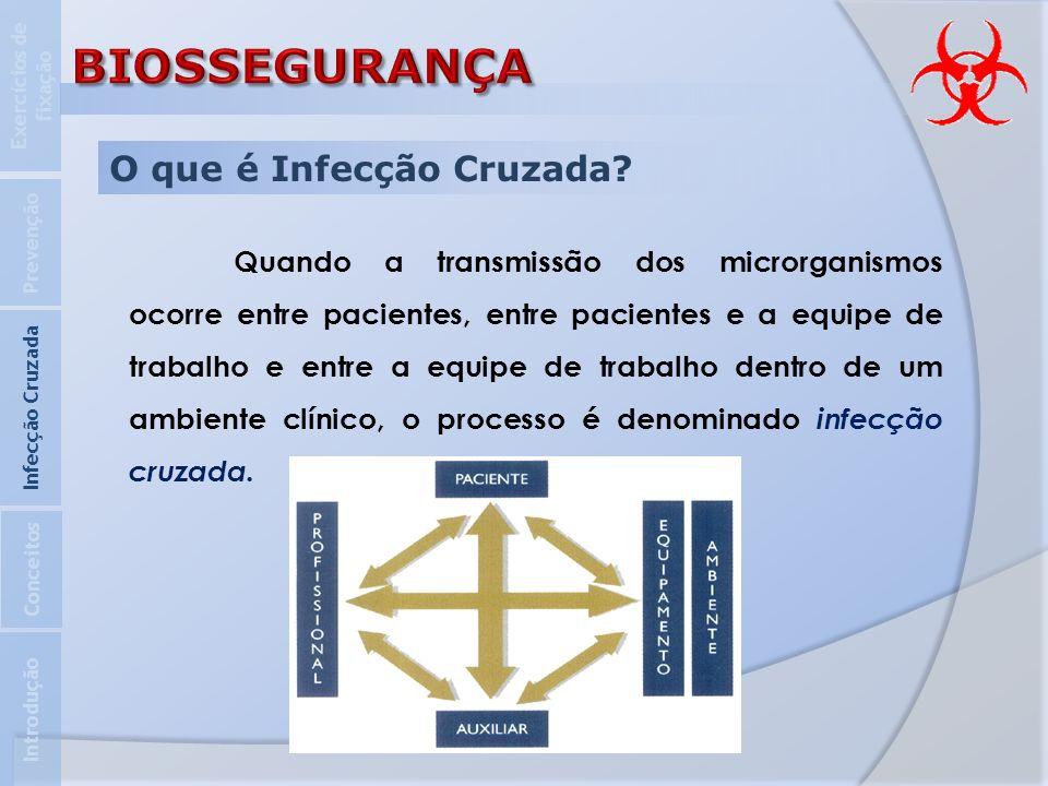 BIOSSEGURANÇA O que é Infecção Cruzada
