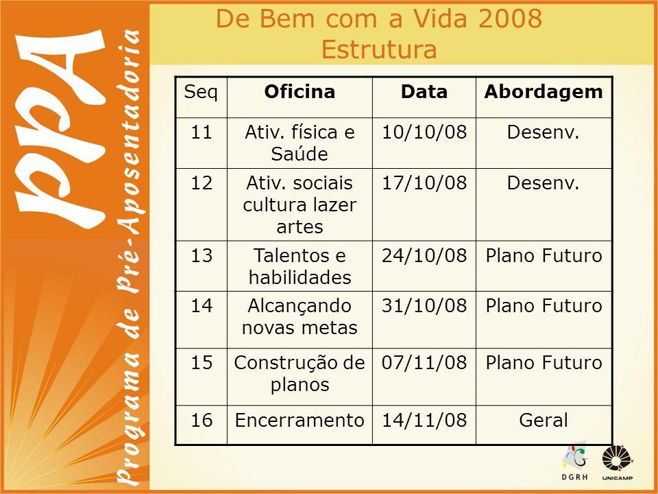 De Bem com a Vida 2008 Estrutura