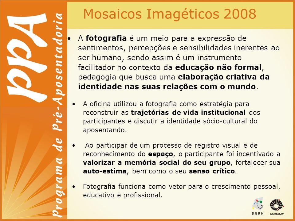 Mosaicos Imagéticos 2008