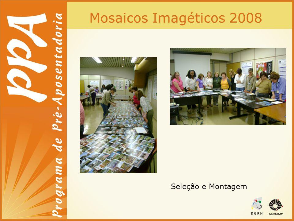 Mosaicos Imagéticos 2008 Seleção e Montagem