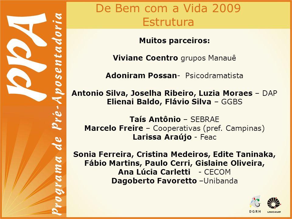 De Bem com a Vida 2009 Estrutura
