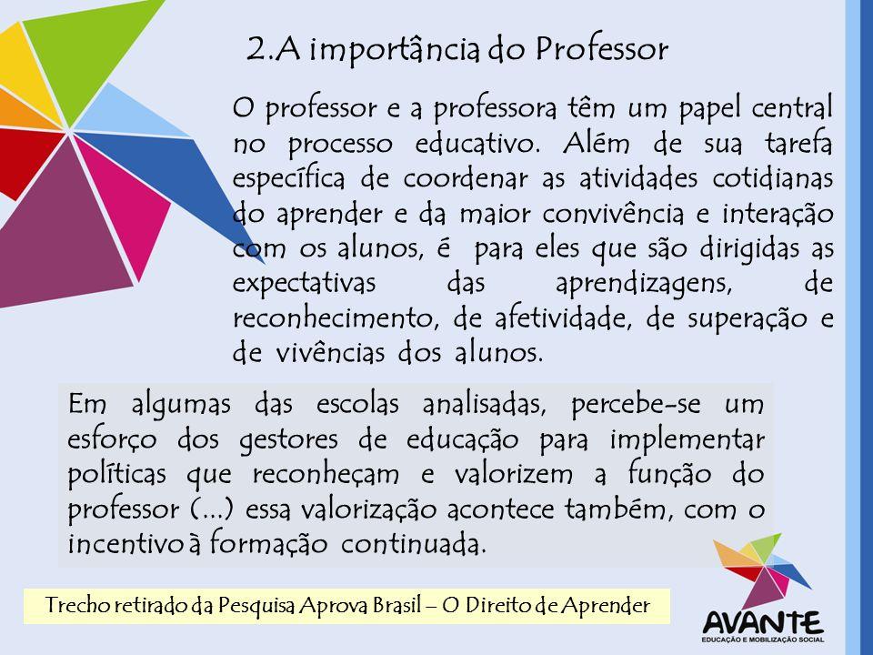 2.A importância do Professor