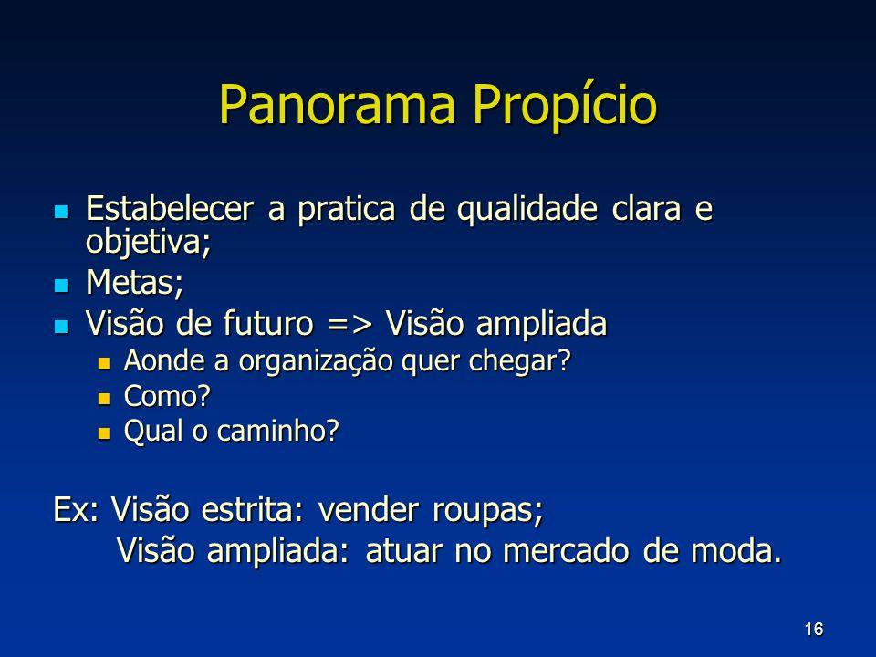 Panorama Propício Estabelecer a pratica de qualidade clara e objetiva;