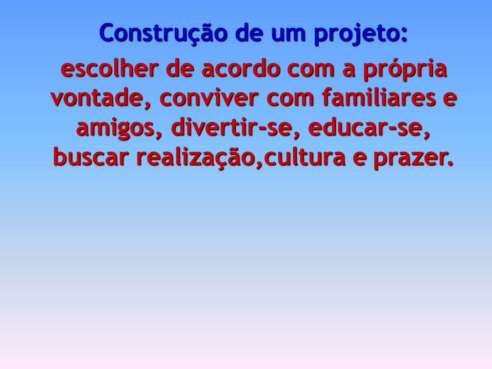 Construção de um projeto: