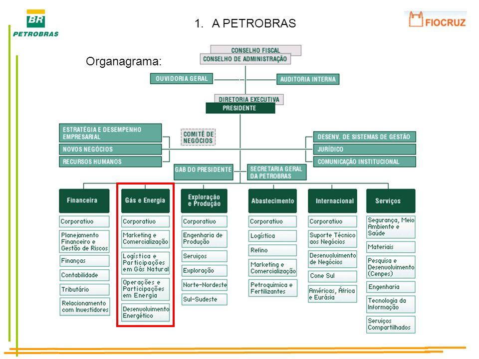 A PETROBRAS Organagrama: